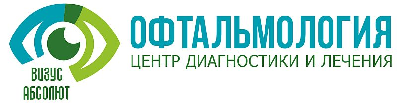 vizus_logo